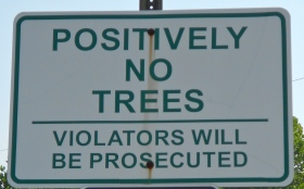 Positively_no_trees,_Leesport_PA